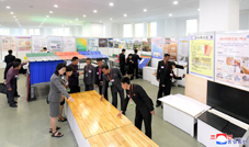 National Sci-Tech Exhibition in Field of Finishing Building Materials Opens
