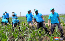 Members of UNICEF Mission Help Korean Farmers