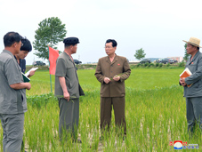Kim Jae Ryong Inspects Units in Agricultural Sector