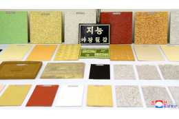 New Finishing Building Materials Produced